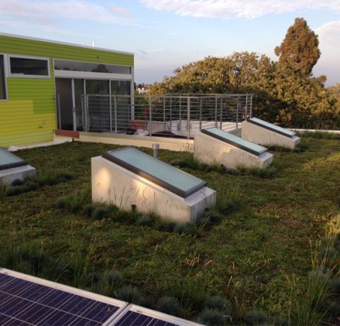 rg1 Residential Green Roofing